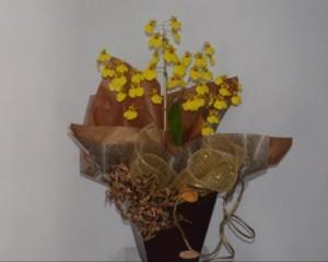 007 - Orquídea em cachepot de vidro e galhos secos